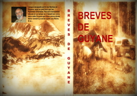 Avatar couverture breves finale
